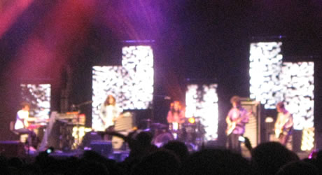 MGMT live in Brooklyn, July 1, 2009
