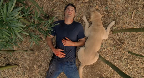 Matthew Fox in Lost